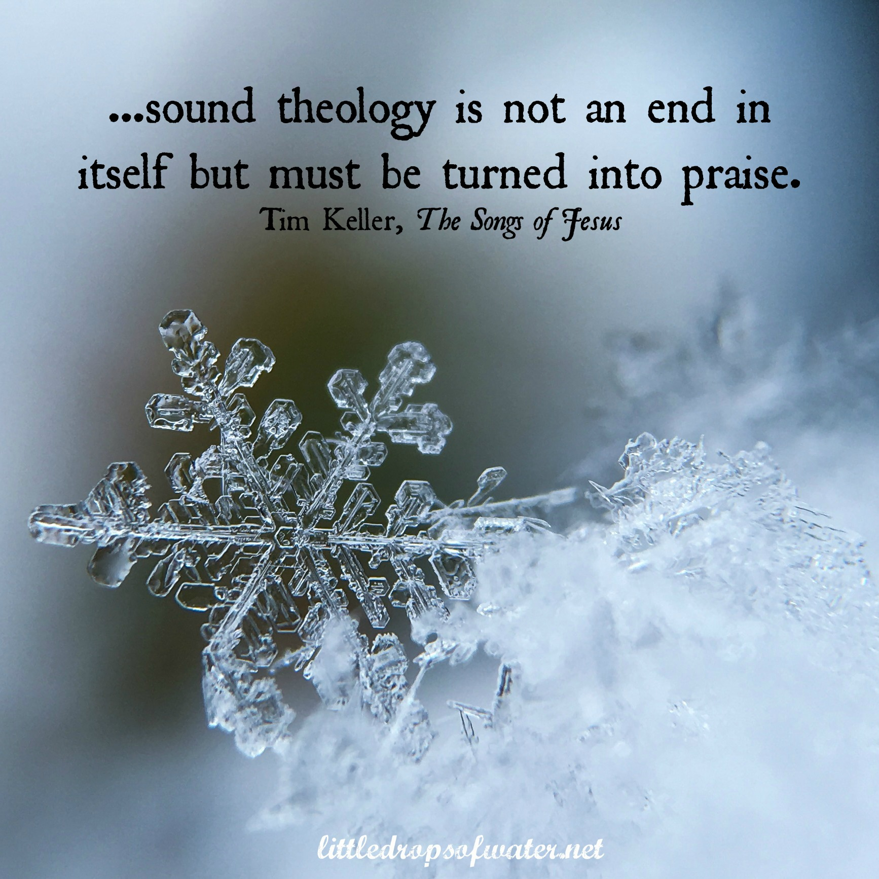 Wednesdays with Words: Theology & Praise