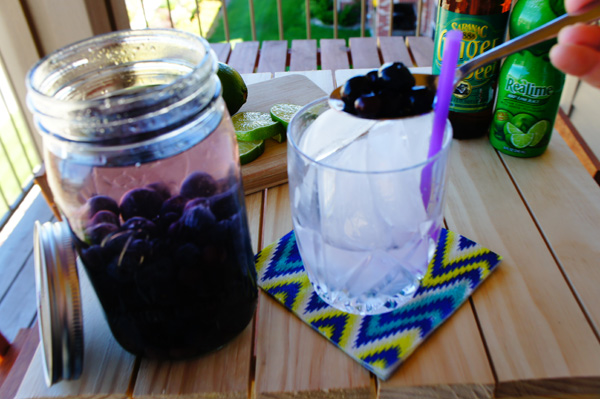blueberry moscow mule // LLinaBC.com