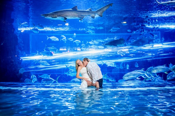 amazing vegas wedding photo