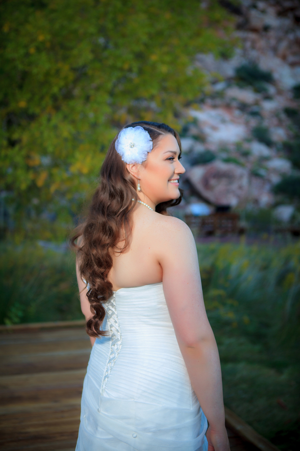 Calico Basin Wedding by Taylored Photo Memories | Little Vegas Wedding