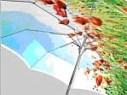 Umbrella - sunny
