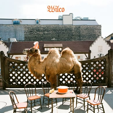wilco (the album) cover