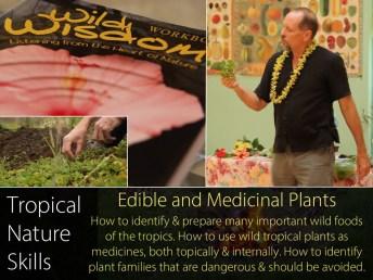 em-nature-skills_syllabus_edible_plants