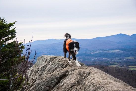 Ridge Runner -Stowe Pinnacle