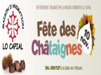 39ème fête des châtaignes @ Salle de l'Albaret | Saint-Juéry | Midi-Pyrénées | France