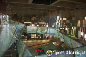 Museo-Ol-C3-ADmpico-4