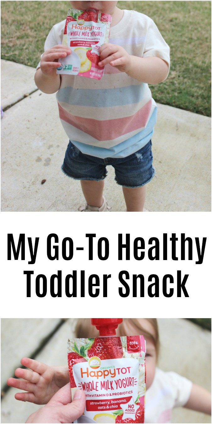 My Go-To Healthy Toddler Snack LoganCan.com