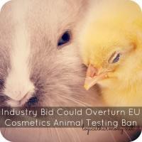 Industry Bid Could Overturn EU Cosmetics Animal Testing Ban