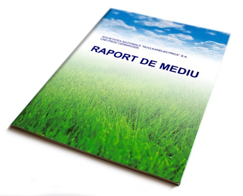 Environmental Report - cover