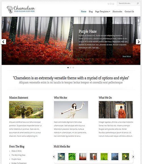 Chameleon - Plantilla WordPress multipropósito