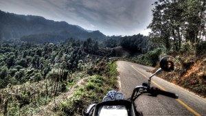 Viaggiando in moto per il mondo, il mare di alberi sulla sierra de Oaxaca in Messico