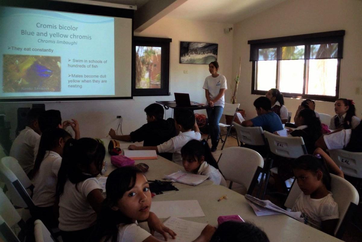 Katie volunteering at an environmental education talk at CenCoMA © EAL