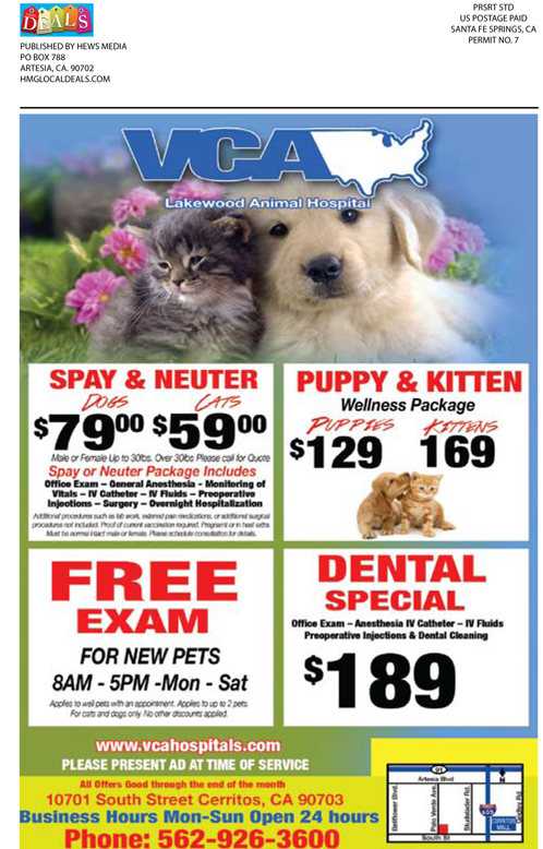 Local Deal August_Web 16 copy