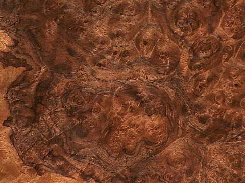 What Is Burled Wood And Why You Shouldn T Paint It Lost