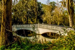 Bridge at Magnolia Plantation