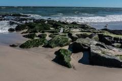 long-beach-island-102052