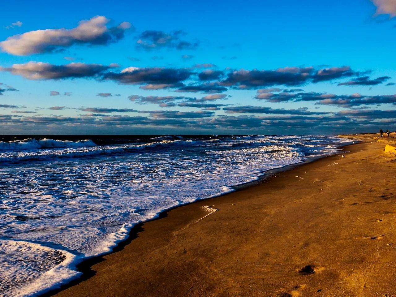 assateague-beach-2338