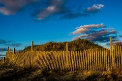 assateague-dunes-2334