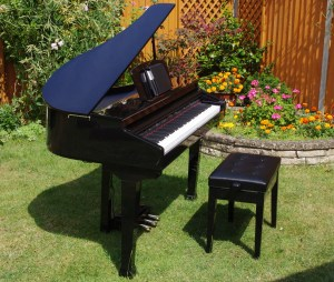 Digital Garand Piano (in a garden)