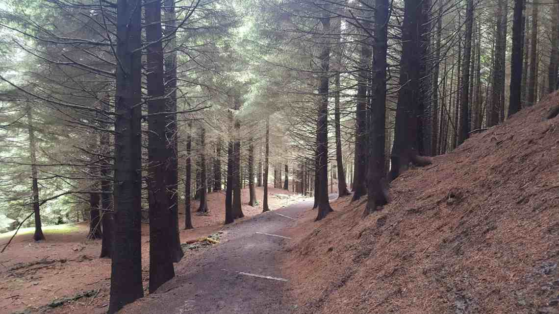 macclesfield forest 3