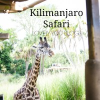 Kilimanjaro Safari at Animal Kingdom