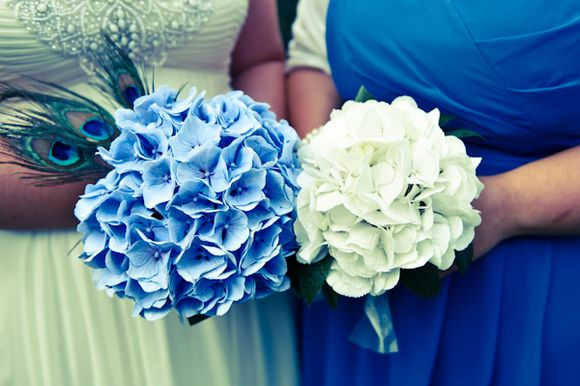 Peacock Blue for a Barefoot Bride and her Grecian Vision…