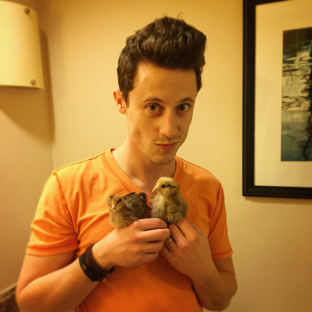 david-and-the-chicks