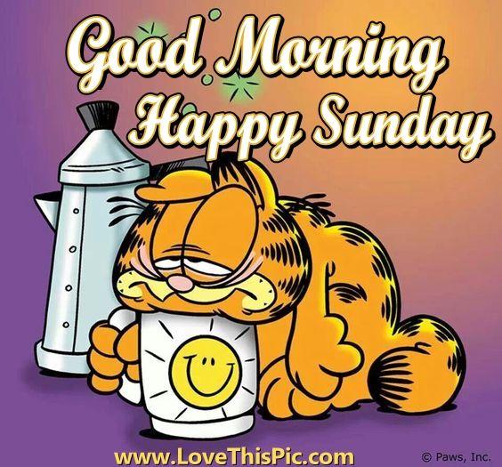 Zucht, het is weer zondag...
