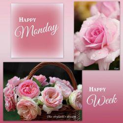 Small Of Happy Monday Pics