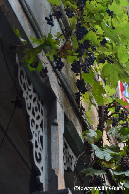 Grapes, Old Town, Tbilisi, Georgia
