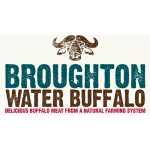 Broughton Water Buffalo