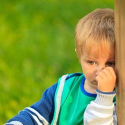 shy-boy