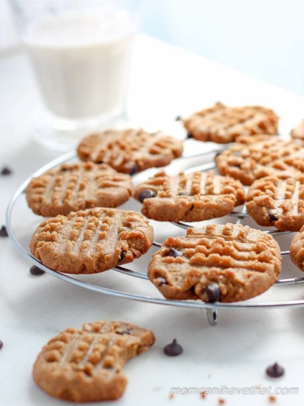 Easy Low Carb Chocolate Chip Cookies