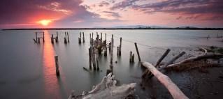 Maremma - La foce del fiume Ombrone