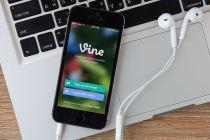 cómo usar vine