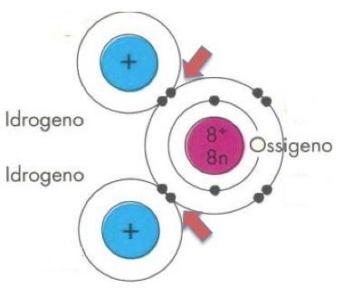 I legami idrogeno-ossigeno nella molecola di acqua si formano per condivisione di una coppia di elettroni (indicate dalle frecce). per formare queste due coppie condivise, ogni idrogeno utilizza il suo unico elettrone, l'ossigeno due dei suoi otto.