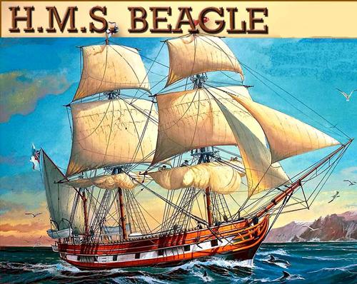 La HMS Beagle fu un brigantino a dieci cannoni della Royal Navy, il cui nome deriva dalla razza canina beagle. Fu varato l'11 maggio 1820. Durante il suo secondo viaggio ospitò a bordo l'allora giovane naturalista Charles Darwin, il cui lavoro rese la Beagle una delle più famose navi della storia.