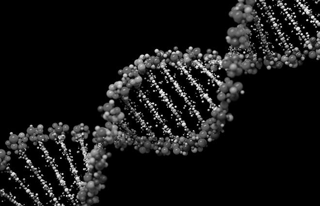 """Il DNA è il """"libretto delle istruzioni"""" del nostro organismo"""