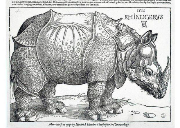Il celeberrimo ritratto di un rinoceronte realizzato da Albrecht Dürer nel 1515
