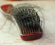 (lundici.it) capelli