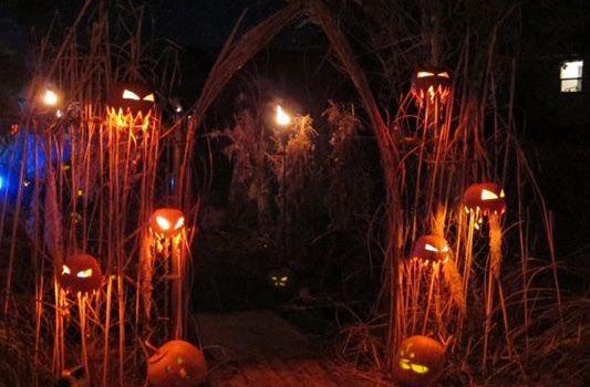 halloweenviale