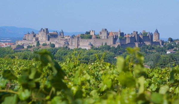 vigneti intorno a Carcassonne