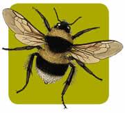 Il logo di Oltremisura2010