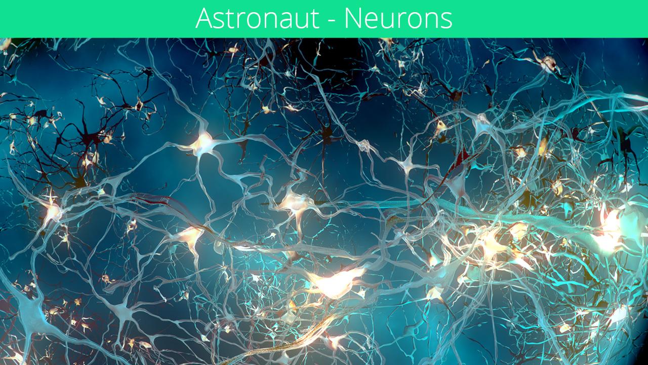 iX_NSC_neurons