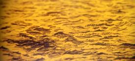 yellow-ocean-glitch
