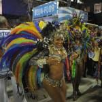 A reveller of Beija-Flor samba school wa