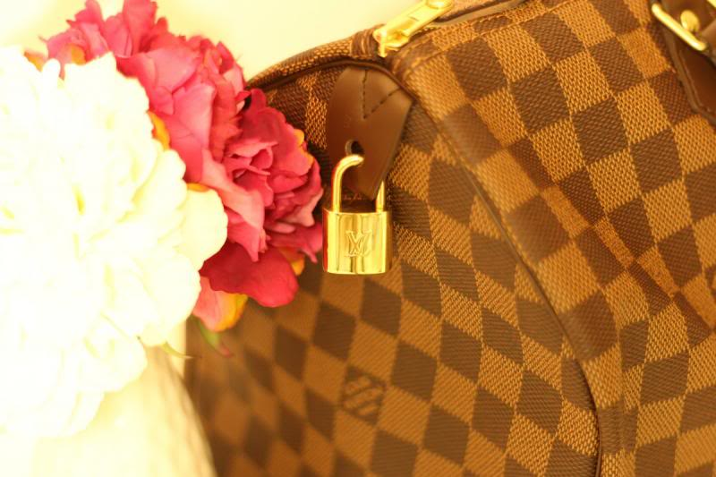 DIY Louis Vuitton Speedy 35 Handbag Shaper