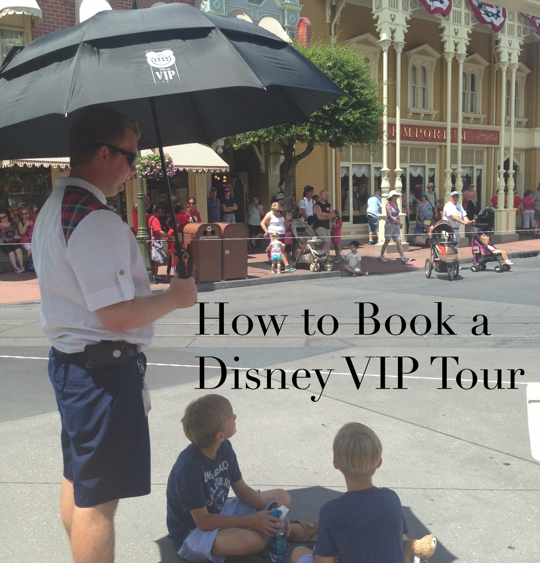5 Great Reasons to Book a Disney VIP Tour