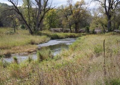 Black Earth Creek Restoration
