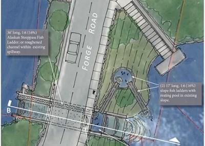 Peconic Estuary Conceptual Habitat Restoration Design